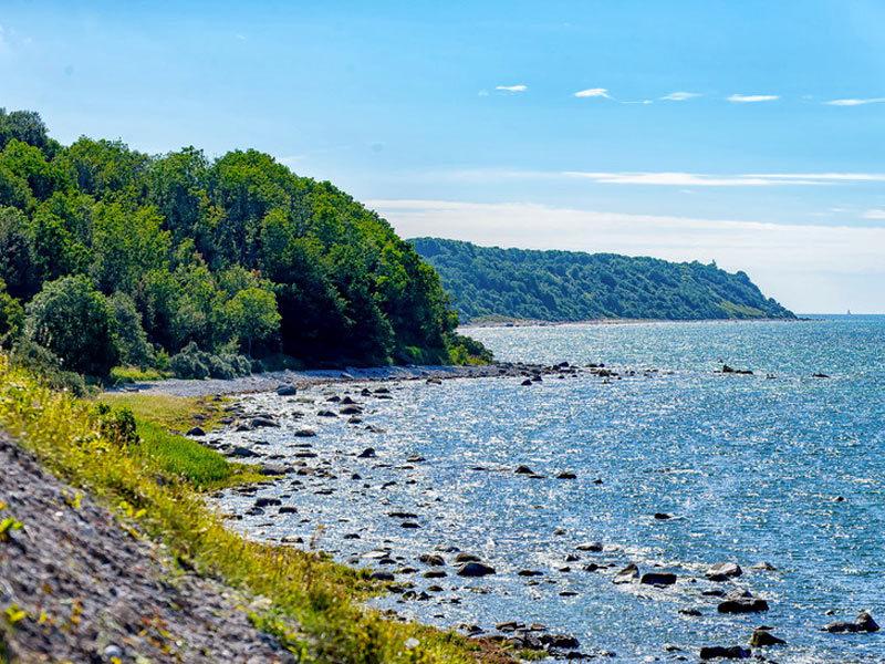 Naturschutzgebiet Nordufer Wittow mit Hohen Dielen