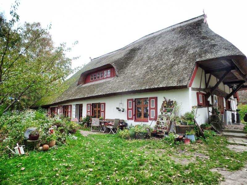 Dornenhaus