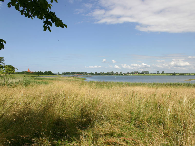 Naturschutzgebiet Fauler See - Rustwerder/Poel