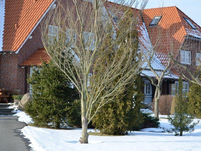 Silvester in Langen Brütz