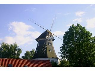 Galerieholländermühle in Graal-Müritz