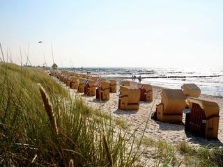 Arrangement Sommer - Sonne - Badezeit