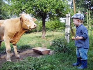 Bauernhof am Wiesengrund