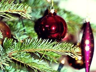 Weihnachtsarrangement im Aparthotel Seeschlösschen