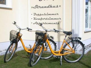 Frühlingserwachen inkl. Fahrräder und Lunchpaket....