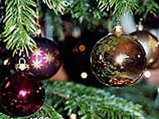 Unser Weihnachtsarrangement