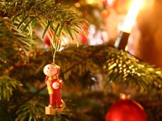 Weihnachten an der Müritz