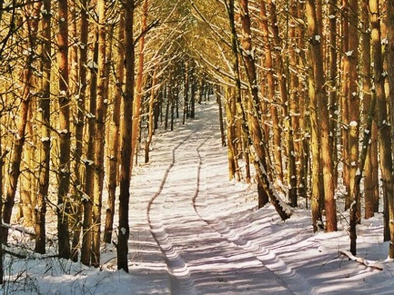 Winterliche Verwöhntage