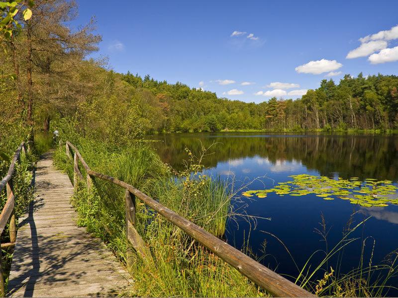Müritz-Nationalpark