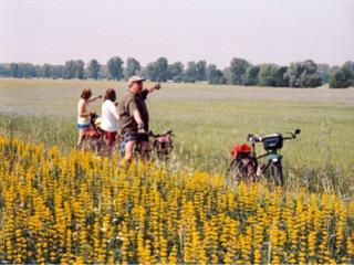 Rundroute Neubrandenburg - Feldberg - Woldegk - Strasburg - Neubrandenburg