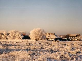 Arrangement Winterspaß und Neujahr