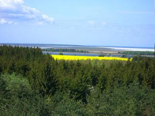 Radwanderung entlang der Boddenküste von Klausdorf nach Zarrenzin