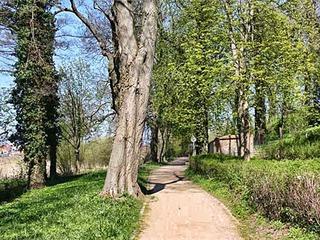 Engelscher Garten