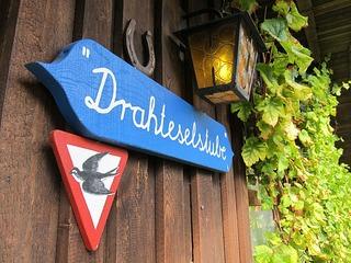 """Arrangement """"Radeln auf Usedom"""" mit 7 Übernachtungen"""