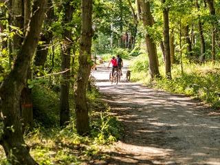 Große Radtour durch die Rostocker Heide