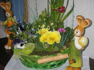 Ostern auf dem Darss