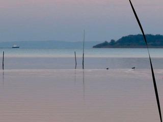 Mediales Malen am Schweriner See (Sommer)