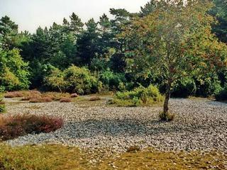 Schmale Heide
