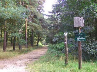 Rundwanderweg Eggesiner See