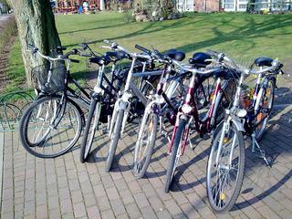 Fahrradverleih - Fischerhaus Plau am See
